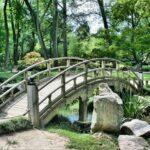 I 5 migliori consigli per avere un giardino in perfetto stato