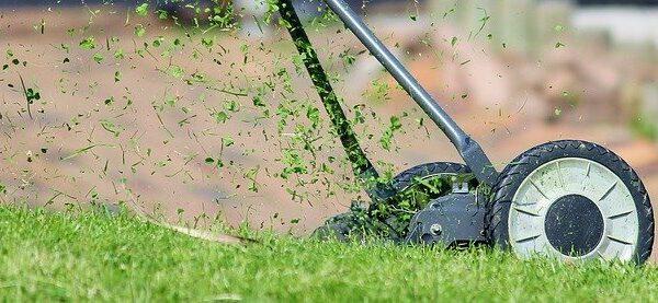 rasaerba tagliaerba automatizzato giardino verde